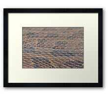 Scales of a Water Snake Framed Print