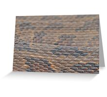 Scales of a Water Snake Greeting Card