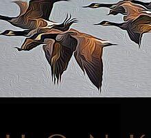 Honk by JimPavelle