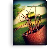 Cowboy Ribbon Canvas Print