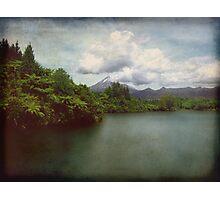 Taranaki Treat Photographic Print