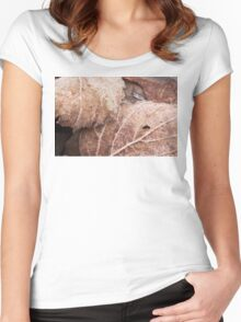 Frosted Decay Women's Fitted Scoop T-Shirt