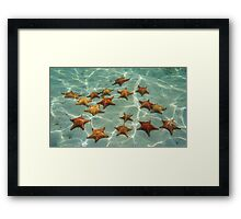 Starfishes on sand underwater Framed Print