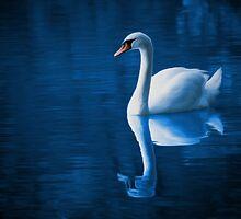 Swan by Tr0y