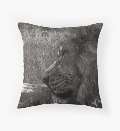 At One With Nature #3 Throw Pillow