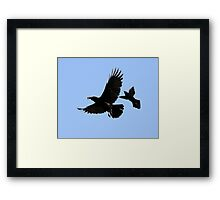 P-61B Black Widow. Framed Print