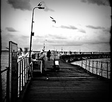 Jetty Life by Melissa Drummond
