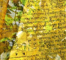 detail, tibetan prayer flag. sikkim by tim buckley | bodhiimages