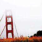 My favorite bridge  by Santamariaa