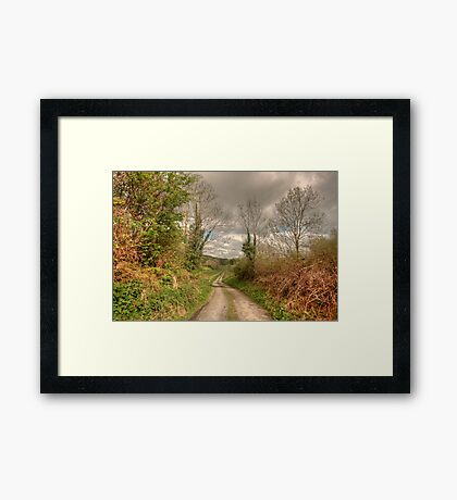 Rural Clare road Framed Print
