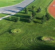 Crop Circles on the Cul-de-Sac ? by LeftHandPrints