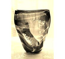 Fragile Tiger Photographic Print