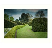 The Long and Winding Hedge:-) Art Print