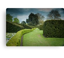 The Long and Winding Hedge:-) Canvas Print