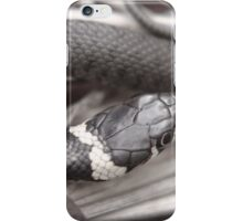Don't slither away!! iPhone Case/Skin
