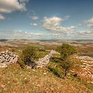 Glen Hill View by John Quinn