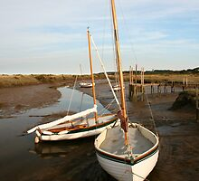 High and dry in Norfolk by Paul Pasco