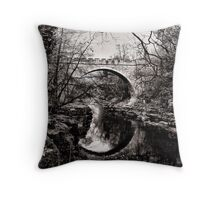Roots of water and stone Throw Pillow