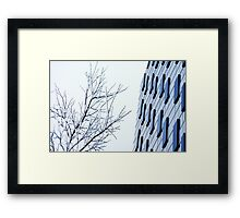 Glass and Ice Framed Print