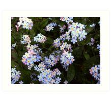 Little blossoms Art Print