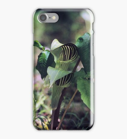 JACK-IN-THE-PULPIT iPhone Case/Skin