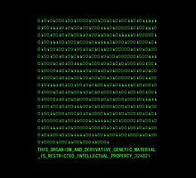 Cosima Niehaus - Binary Code 324B21 by yannbugg
