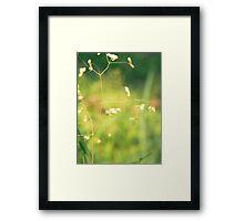 grass IV Framed Print