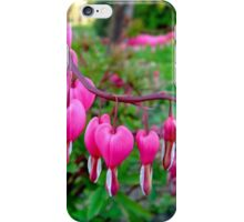 Spring and Love iPhone Case/Skin