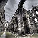 Kirkstall Abbey #03 by shutterjunkie