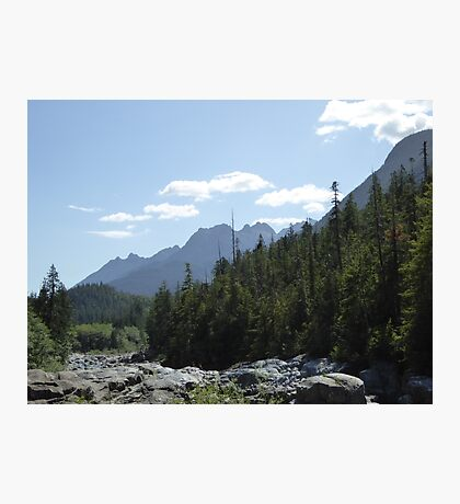 Trees and mountains landscape Photographic Print