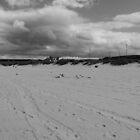 South Shields Beach by Tony Blakie