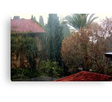 Out came the rain... Canvas Print