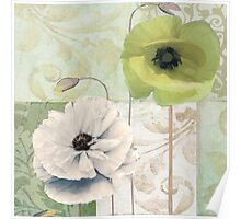 Calyx and Cream Poppies Poster