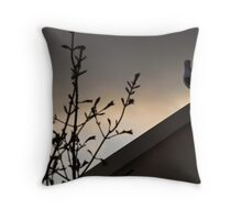 last flight of the day Throw Pillow