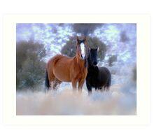 Smokey The Bandit ~Little Wild  Foal of Steptoe Valley Art Print