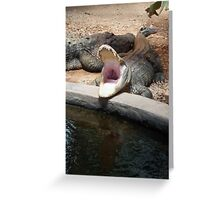 Gator opening wide Greeting Card
