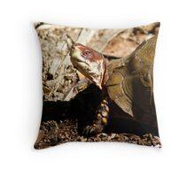 Turtle Closeup Throw Pillow