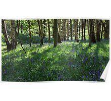 Springtime In Ilkley Poster