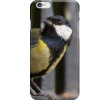 Great Tit on Railings iPhone Case/Skin
