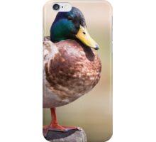 Duck #2 iPhone Case/Skin