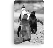 Penguin Walk Canvas Print