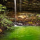 Green Reflection - Rattlesnake Falls - Ozark National Forest - Arkansas by Scott Ward