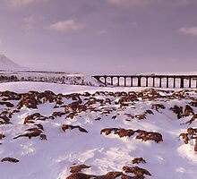 The Big Freeze, Ribblehead from Batty Moss by Chris Addis