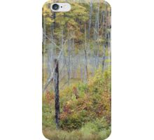 Wetland Fall Colors iPhone Case/Skin