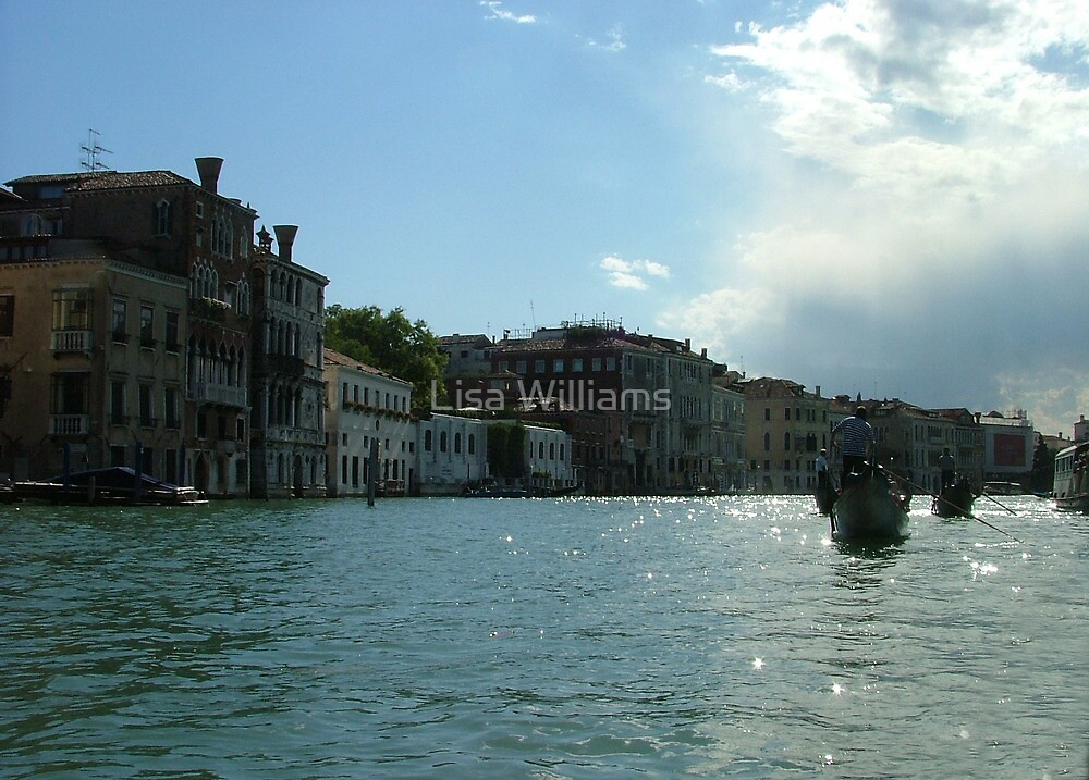 Venice pt3 by Lisa Williams
