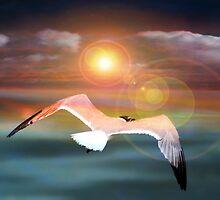 Free Bird by Darlene Lankford Honeycutt