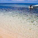 Fijian beach by Explorations Africa Dan MacKenzie