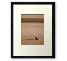 In a sea of sand Framed Print