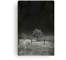 I Walk This Lonely Road Canvas Print