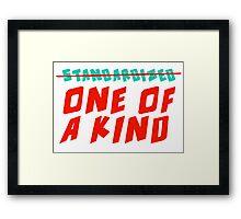One of a Kind (NOT Standardized!) Framed Print